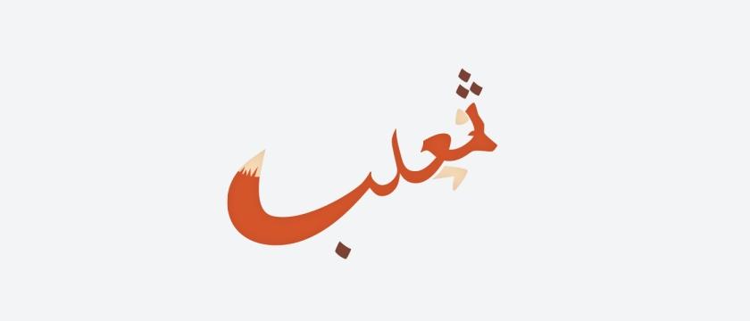 Mahmoud Tammam Fox