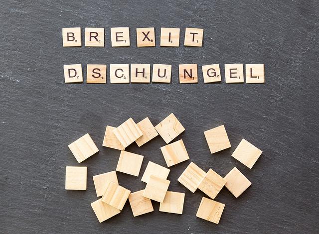 Flickr Tief im Brexit-Dschungel